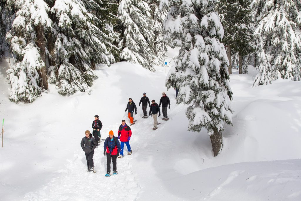 Several snowshoers hiking down between trees over soft snow